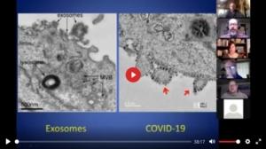 Coronavirus-/PCR-Test-Betrug
