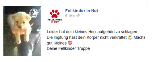 Foto: Fellkinder in Not, 5.5.2014